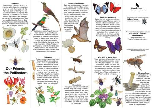 pollinator-guide-brochure